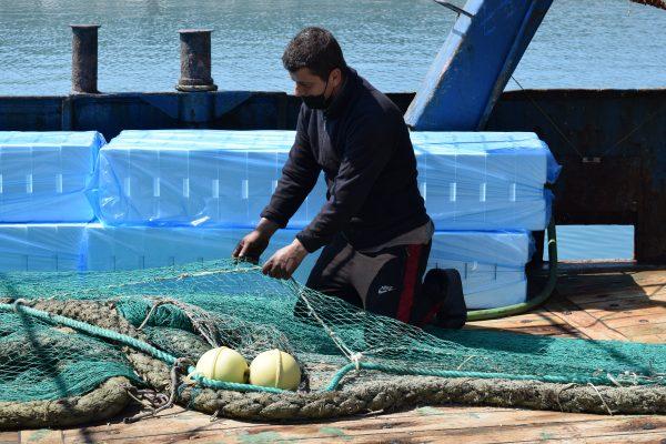 Zinxhiri i paralizuar i peshkimit në Shqipëri ndez sinjalin SOS
